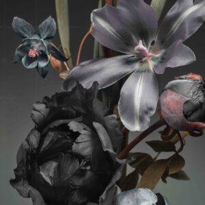 پوستر دیواری گل خاص