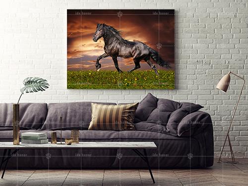 تابلو عکس دکوری اسب زیبا