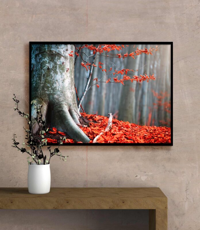 تابلو عکس طبیعت پاییزی تنه درخت