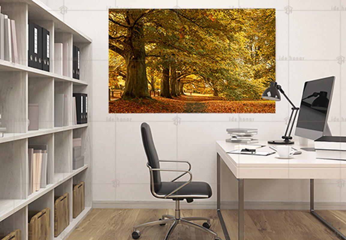 تابلو عکس درخت بزرگ پاییزی