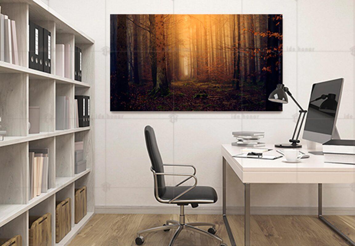 تابلو عکس دکوری جنگل پاییزی