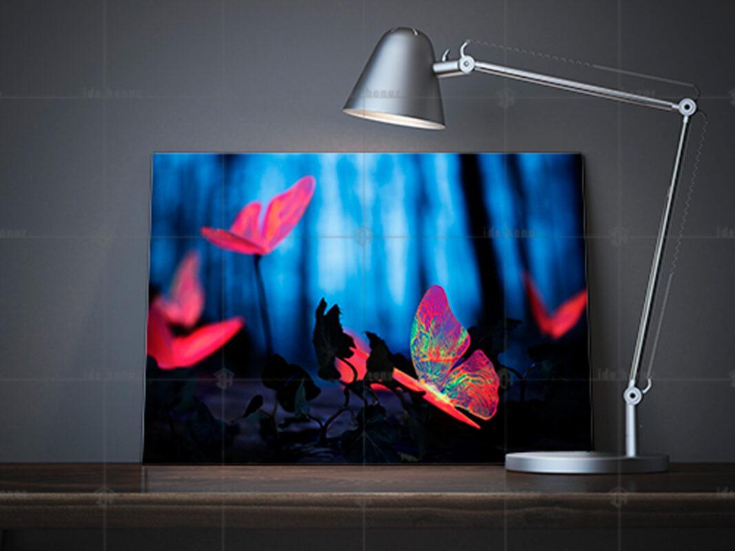 تابلو عکس پروانه شبتاب