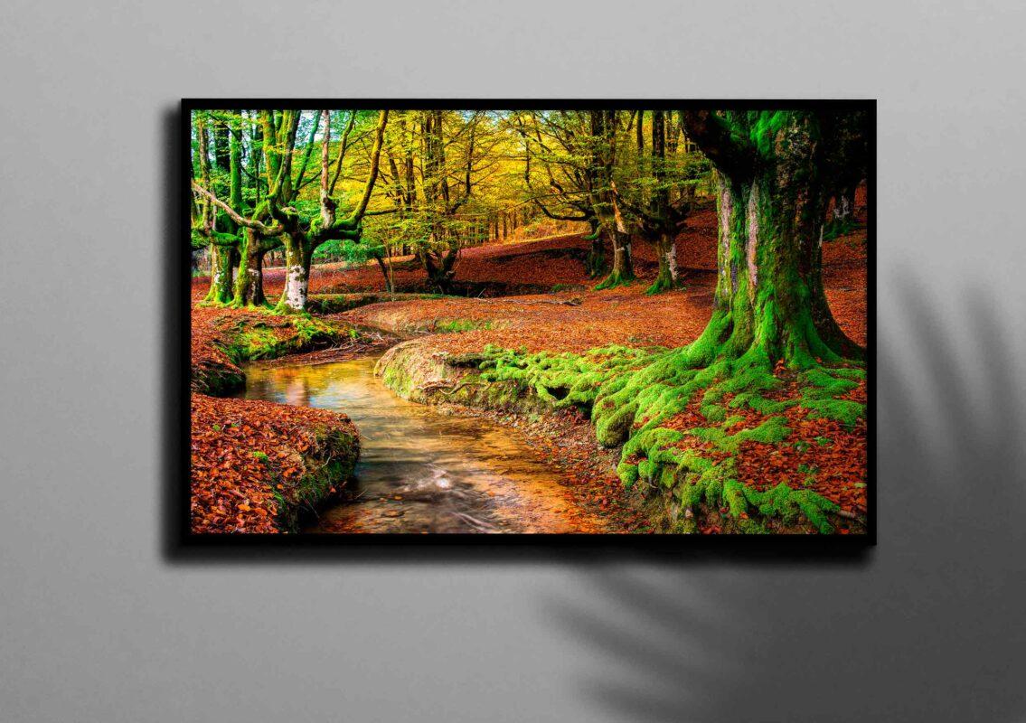 تابلو عکس رودخانه در جنگل پاییزی