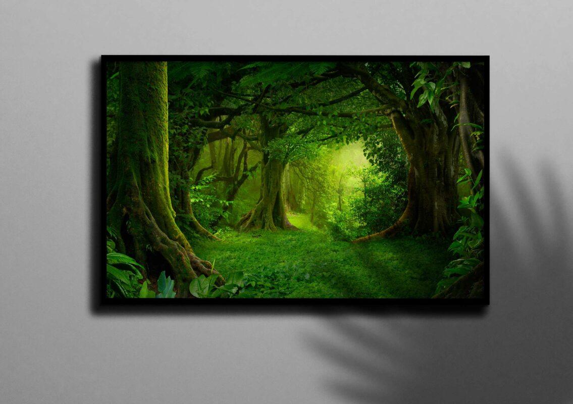 تابلو عکس جنگل سبز بکر