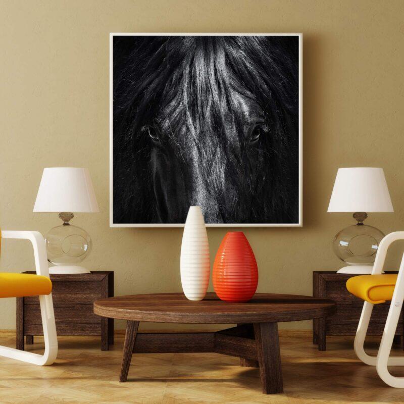 تابلو عکس چهره اسب سیاه